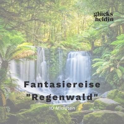 Lasst euch in den Regenwald entführen und erlebt tolle Abenteuer!